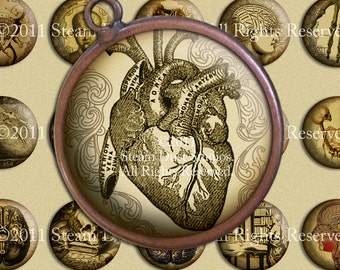 Victorian Goth Antique Anatomy - 30mm Cameo-Size Circles - Skulls, Skeletons, etc. - Digital Collage Sheet - Victorian Steampunk Printables