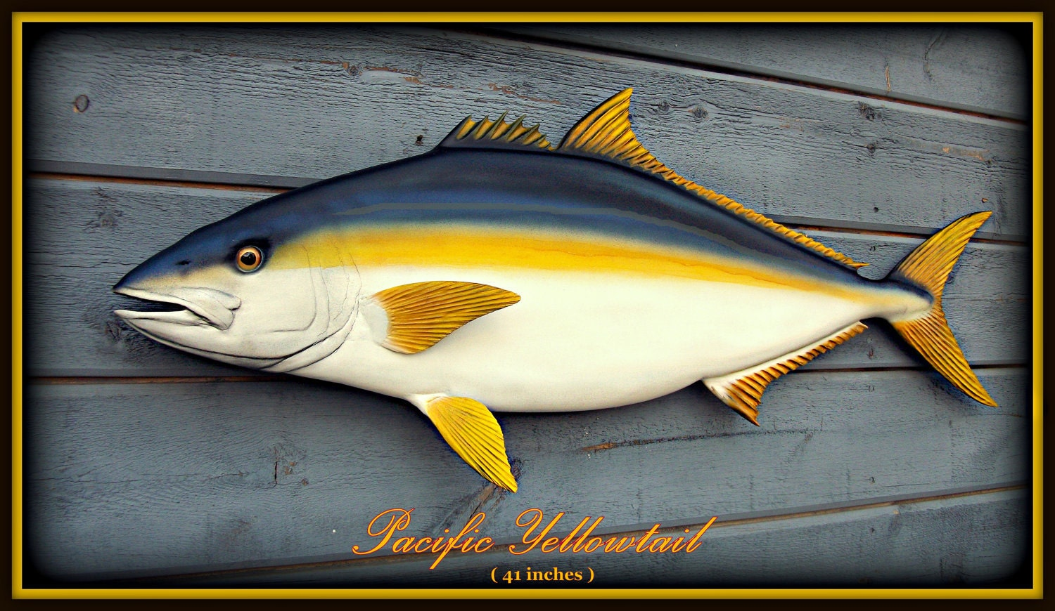 Yellowtail fish art wood carving 40 39 39 sulpture wood for Yellow tail fish