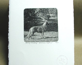 Etching, German Shepherd, hand pulled intaglio print signed by artist