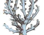 Antique Branch Coral Print - Coastal home decor - Nautical home - Beach house decor - Misty Blue