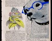 NATURAL SCIENTIST, original ARTWORK, mixed media, paint