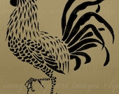 Rooster Clip Art, Vintage, Royalty Free, No Credit Required, Vintage Cockerel