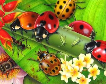 Ladybird art print by Fiammetta Dogi - Large print