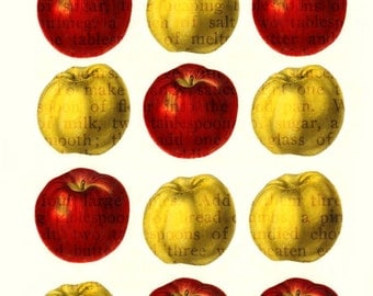 Apple Pudding Giclee Art Print.  Fruit with Antique Recipes. Great for Autumn Seasonal Decorating, Thanksgiving, Halloween.