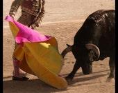 Corrida in sepia - Signed photo 8 x 12 - BOGO sale - corrida bullfighting torero matador yellow pink sepia folklore bullfight