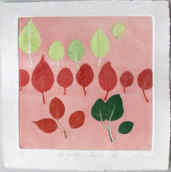 Pear Leaf Monotype fine art print.