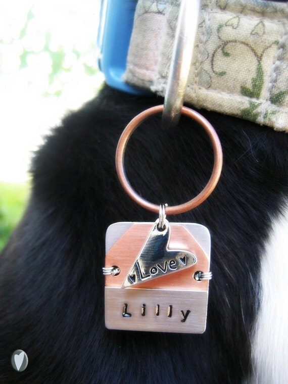 Personalized Pet Id Tag - Wire Wrapped - Aluminum Backer