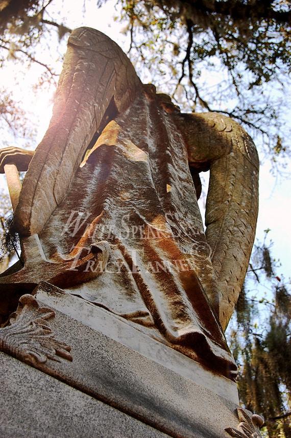 Angel, Wings, Sunshine, Sunlight, Trees, Spanish Moss, Stone, Light, Statue, Headstone, Bonaventure, Cemetery, Savannah Georgia, Photography