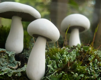 White Agaricus Field or Meadow Mushroom Stakes - Moss Terrarium or Planter Decor - Whimsical Woodland Fairy Tale - Set of 3