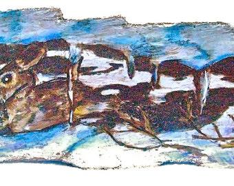 Rabbit Wood-burned Art on Driftwood.