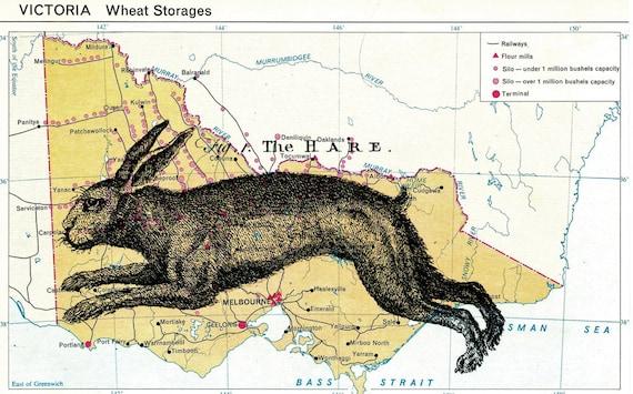 vintage altered art hare print on vintage victoria, australia 5 x 8 map