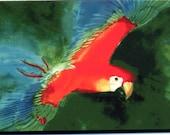 Example only, pet portraits,Parrot bird painting 8x10 original watercolor painting, birds, bird art, pet birds