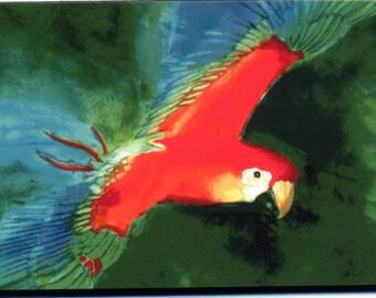Parrot painting, 8x10 print from original watercolor, art & collectibles, bird art, wall art,  earthspalette
