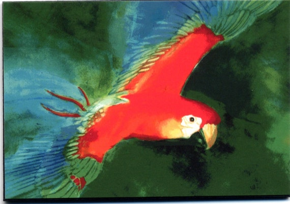 Parrot painting, 8x10 watercolor, PRINT, art & collectibles, bird paintings earthspalette