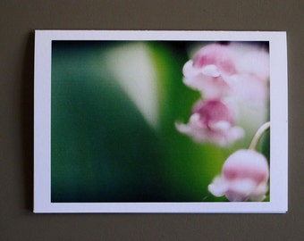 colorful lily of the valley and sweet pea--blank 4x6 art cards