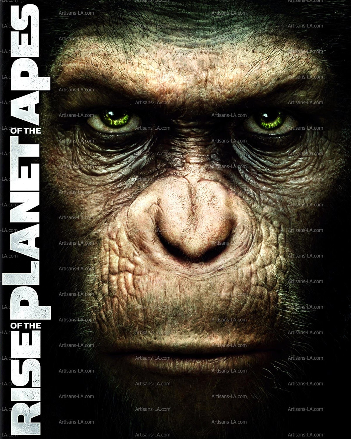 Rise Planet Apes Poster