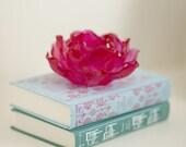 Hollow Secret Book Safe - Jane Austen's Sense & Sensibility