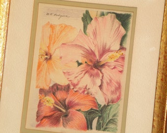 Flowers Colored Pencil Drawings Pair Signed Matted Framed