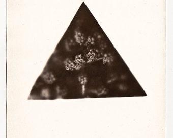 One of a kind sepia photogram - original triangle artwork