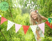 Strawberry Patch Lemonade Stand Burlap Banner / Photography Prop