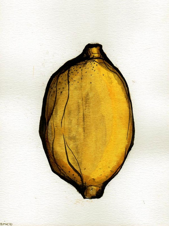 Fruits - Drawings with ink on acid free paper Sennelier 200gr - Lemon / yellow /watercolor / ink by Cristina Ripper