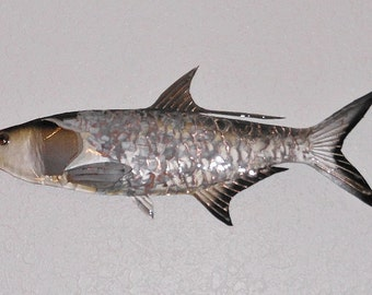 Painted Copper Tarpon     FREE SHIPPING