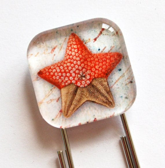 Glass Bookmark, Starfish Bookmark, Bookmark, book mark, Starfish, Ocean, Beach