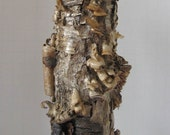 "Birchbark Wild Mushroom Vase, Woodland Foraged, ""Column"", Organic"