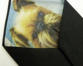 Reserved for Ashley Price 1 Peek-a-boo tie with Rush Fee