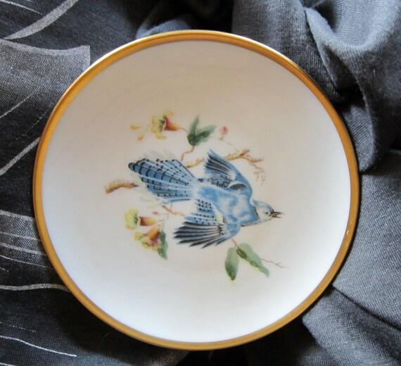 """Vintage 1960s Blue Jay Audubon Series China Plate 8"""""""