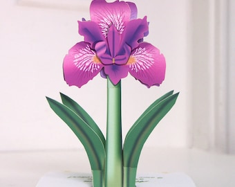 Pop up Irises card Purple Iris pop-up card Any occasion card