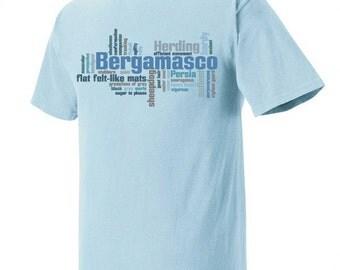 Bergamasco Garment Dyed Cotton T-shirt