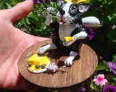 Handmade OOAK (one of a kind) Cat, Chester the Kitty Cat, Cat Lover's gift