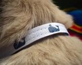 "Toy Dog Collar 3/8"" - Preppy Navy Blue Whales"