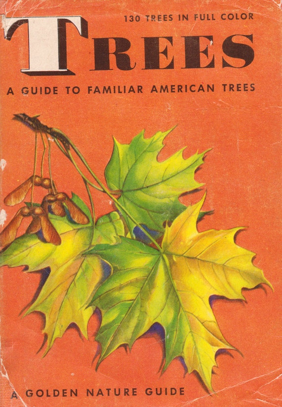 Trees: A Guide to Familiar American Trees (A Golden Nature Guide)