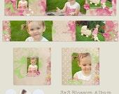 3x3 WHCC Accordion Album Template, Blossom .psd file