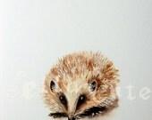 Hedgehog - a Spring Beastie Giclee print