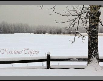 A Winter Walk at Creamer's Field, Fairbanks, Alaska photography