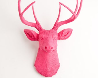 Taxidermy Deer Head Mount - The Alejandra - Pink Resin Deer Head, Pink Resin Stag by White Faux Taxidermy