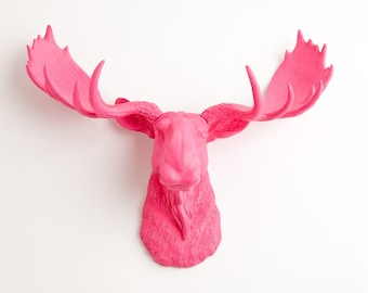 Faux Moose Head Wall Mount, The Phillipa - Pink Resin Moose Decor Resin by White Faux Taxidermy, Chic Faux Animal Heads & Wall Decor