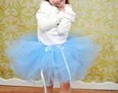 Tinkerbell Mini Top Hat... Tulle Handmade Tutu skirt... Birthday... Photo op...