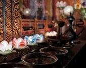Fine art photo print 8x12 Electric lotus on altar