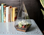 Obelisk Terrarium // handmade with recycled glass // geometric planter for cacti - succulents - crystals