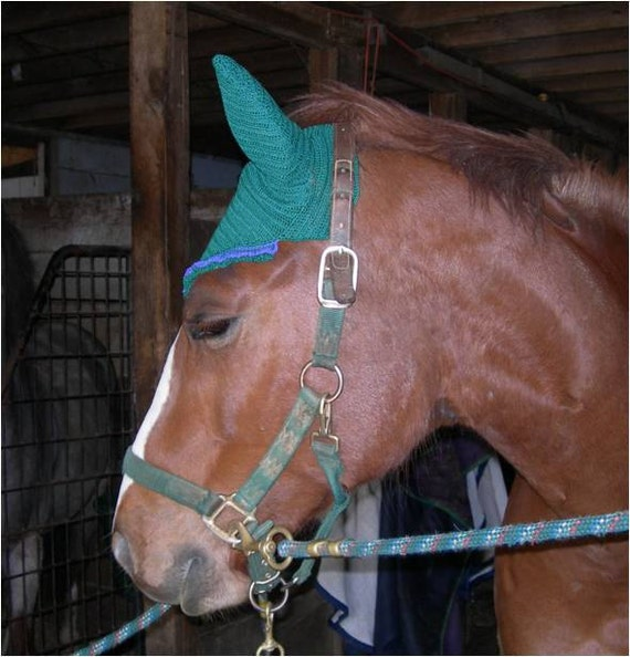 Hunter Green and Purple Crocheted Show & Fly Horse Bonnet