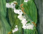 Happy Birthday May! Lily of the Valley - note cards or giclee archival