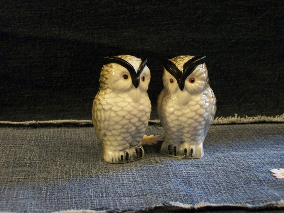 Vintage Ceramic Owl Salt and Pepper Shakers 1970's
