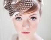Ivory Birdcage Bridal Veil with Satin bows