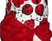 Minky split pocket nappy - Ladybug laughter - One size fits most