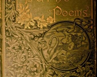 BURNS POEMS Crowells Red Line Poets llustrated