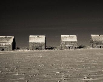Fieldhouse Row - Saskatchewan Prairies - Photographic print